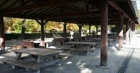 小牧市総合公園市民四季の森