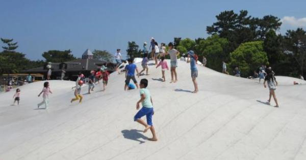 海の中道海浜公園 デイキャンプ場