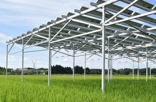 ソーラーシェアリングの仕組みとは?制度と手続きを徹底解説の説明画像その1