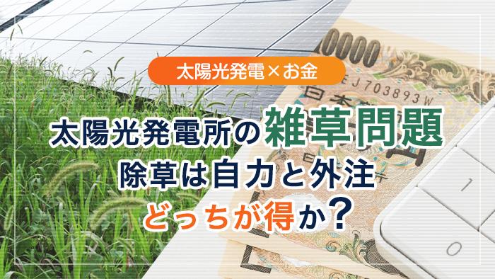 太陽光発電の雑草問題 除草は自力と外注