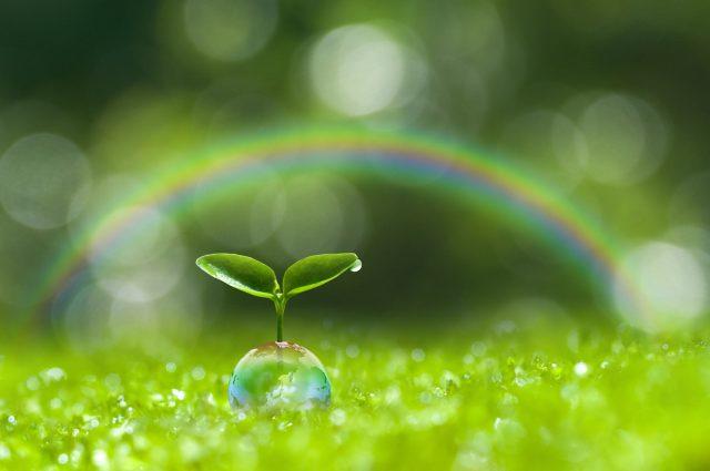 虹とグリーン