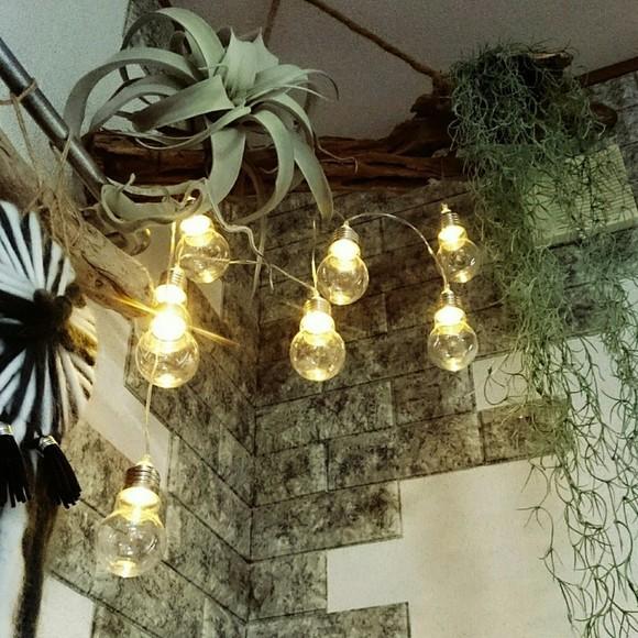 流木と電球ライトの飾り