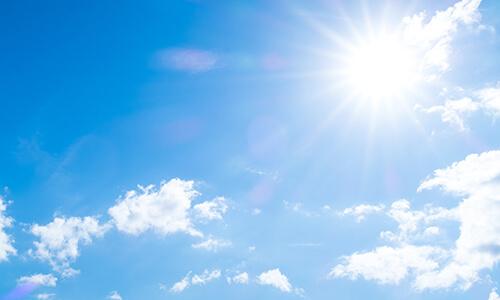 眩しい日光