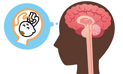 妊娠中だと錯覚する脳