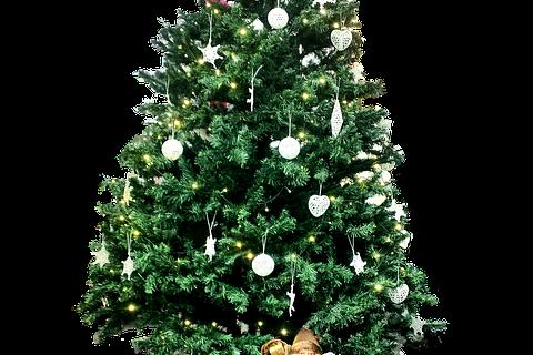 【終了しました】名古屋DRESS部クリスマスパーティー