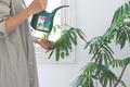 「観葉植物を枯らす女」から卒業する、たったひとつの方法