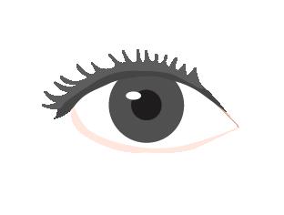 パーソナルカラー診断の瞳