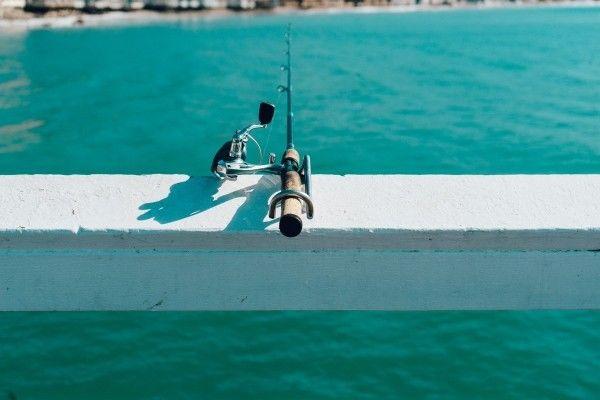 職場と釣り堀、場所によって逆転する上下関係!? 「50年愛される『釣りバカ日誌』、待望の連続ドラマ化!」の1枚目の画像