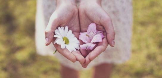 P活・不倫・恋活…大人女子が喜ぶお花見以外の春デート4選