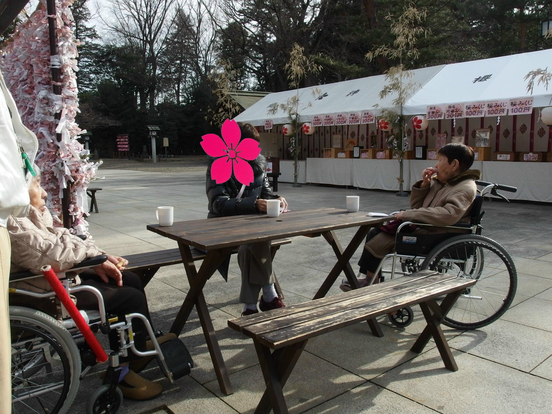 櫻木神社の桜みくじ