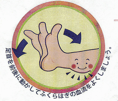 エコノミークラス症候群で死亡8例…足首を前後に動かす運動で予防を : yomiDr. / ヨミドクター(読売新聞)