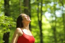 森林浴に健康促進効果 英研究 - goo ニュース