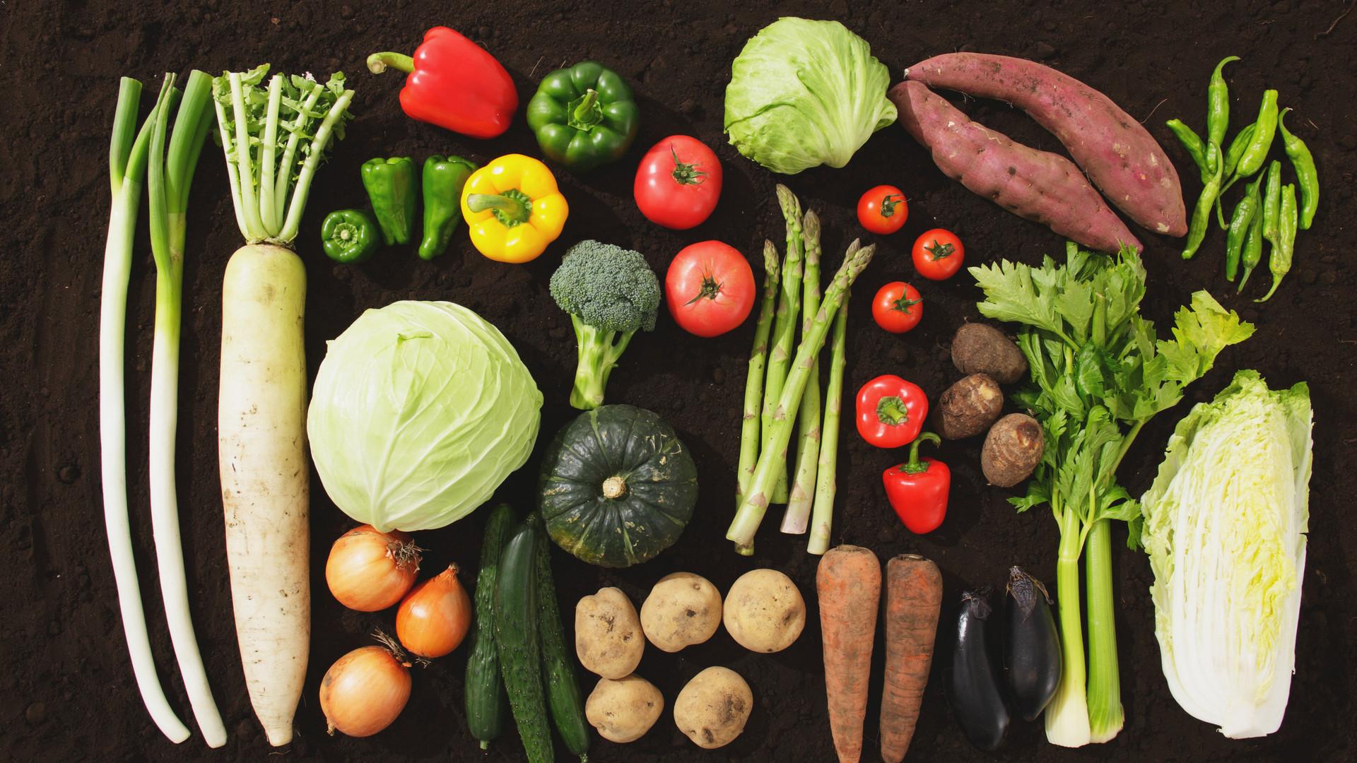 家で捨てる食材6,990名調査 納豆、豆腐、もやし、パン、キャベツ、レタス…1位は?(井出留美) - 個人 - Yahoo!ニュース