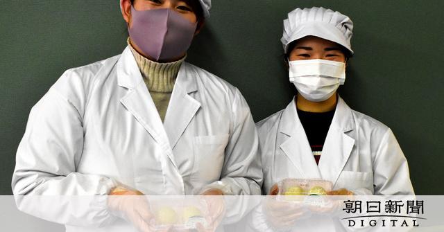 松山東雲短期大「塩ゼミ」 「適塩」学び、商品開発も:朝日新聞デジタル