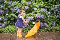 季節の薬膳を組み立てる(梅雨の特徴と薬膳)