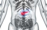 膵炎の基礎知識と脂肪調整食について ①