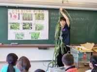 File5:小学校で給食全般の業務に携わりながら活躍中の管理栄養士 池水梨香さん