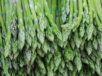 ellyのニュース - 筋力や集中力の維持に。「葉酸」が含まれる、積極的に食べたい10の食品 - 最新グルメニュース一覧 - 楽天WOMAN