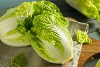 白菜の黒い点はなぜできる?!正体はポリフェノールで食べても大丈夫! | TRILL【トリル】