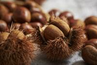 栗の栄養素と健康効果…美味しい食べ方・美容面のメリットも [食と健康] All About