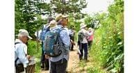森林浴、山道歩き、温泉… 自然が病院「クアオルト」|ヘルスUP|NIKKEI STYLE