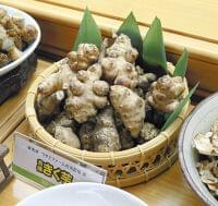 油分・糖分の吸収抑え、血糖値低減も…健康野菜キクイモの栽培開始 : yomiDr./ヨミドクター(読売新聞)