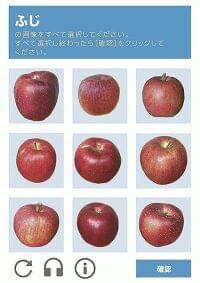 リンゴ「ふじ」この中に三つ、どれでしょう?…「難しすぎる」と悲鳴続々 : 社会 : ニュース : 読売新聞オンライン