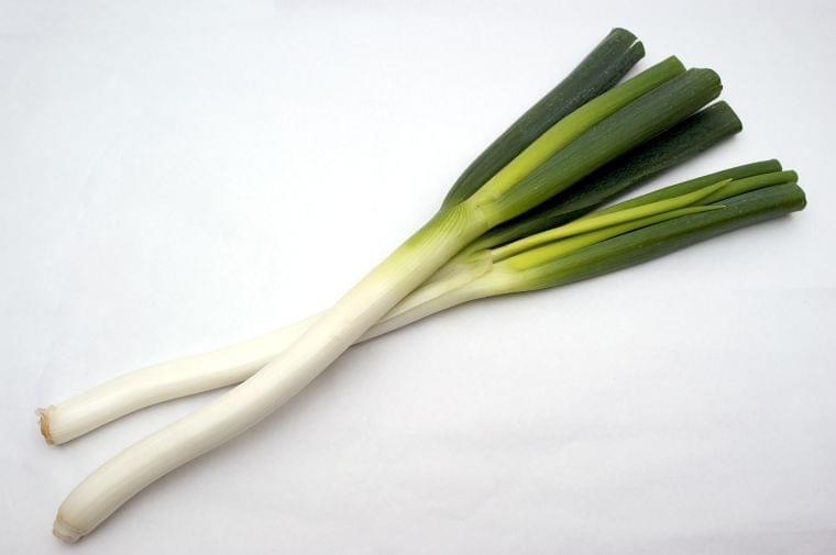 「根深ねぎ」の栄養素や歴史【管理栄養士監修】12月の旬の野菜の栄養学