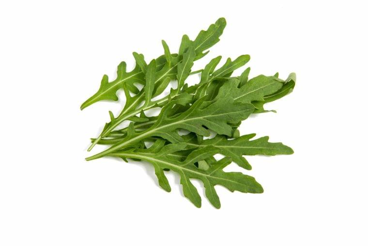 12月の旬の野菜「ルッコラ」