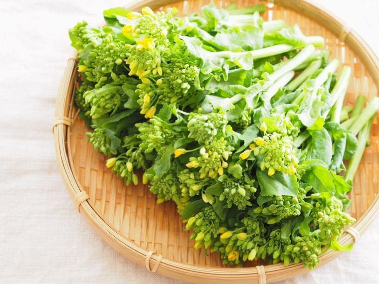 2月の旬の野菜「菜の花」の栄養素や歴史