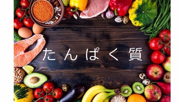 栄養素について知ろう①「たんぱく質」とは?