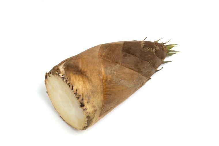 4月の旬の野菜「たけのこ」の栄養素や歴史