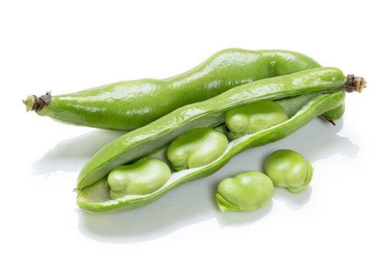 5月の旬の野菜「そらまめ」の栄養素や歴史