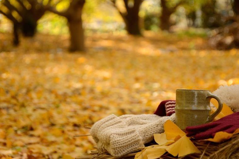 秋は肺をケアしよう! この季節に気を付けるトラブル