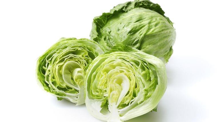 【管理栄養士監修】7月の旬の野菜「レタス」の栄養素や歴史