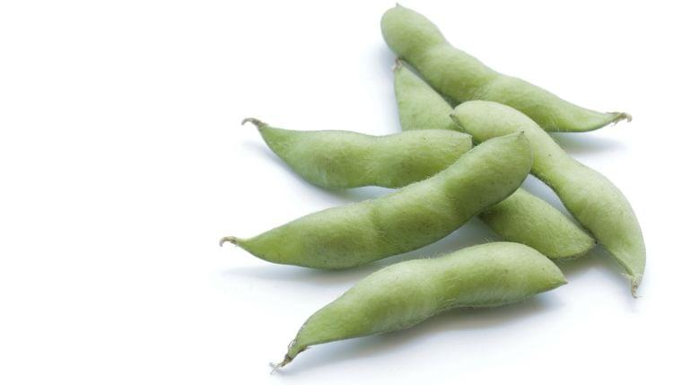 【管理栄養士監修】7月の旬の野菜「枝豆」の栄養素や歴史
