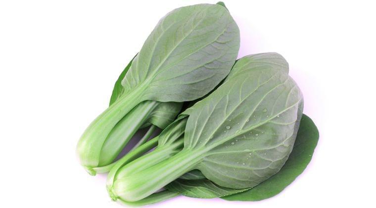 「チンゲン菜」の栄養素や歴史【管理栄養士監修】10月の旬の野菜の栄養学