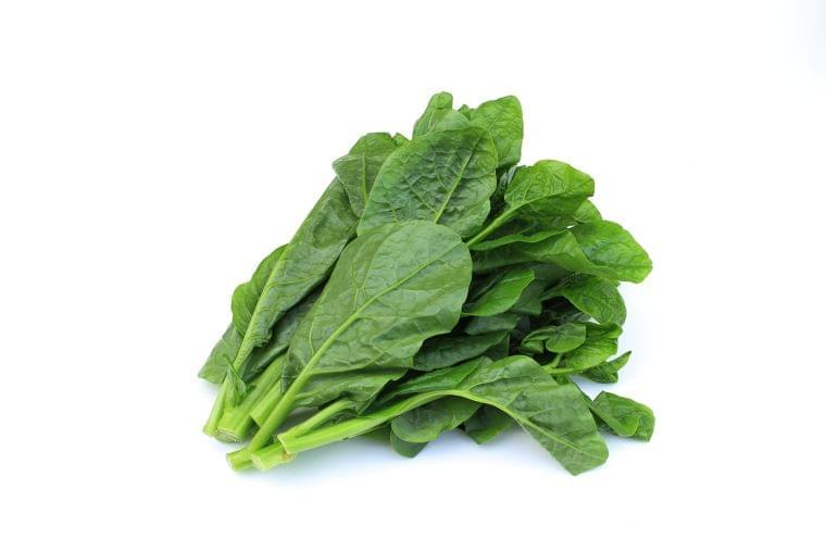 「つるむらさき」の栄養素や歴史【管理栄養士監修】11月の旬の野菜の栄養学