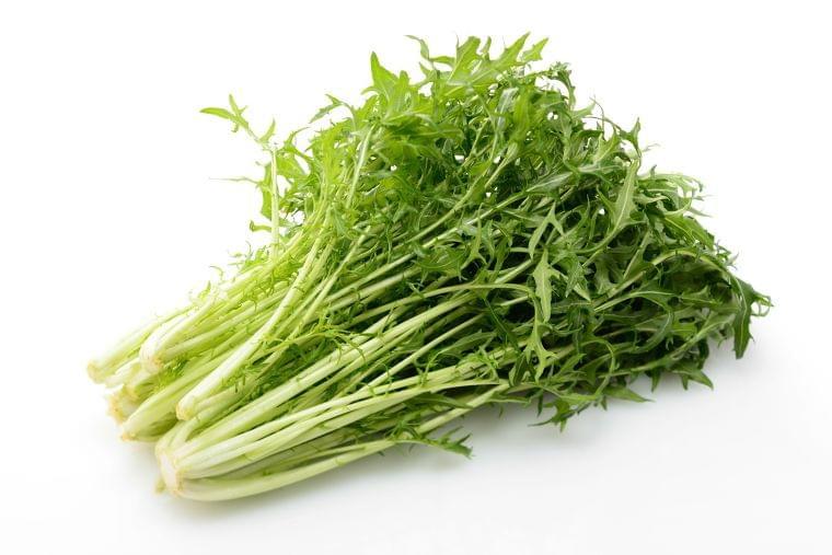 「水菜」の栄養素や歴史【管理栄養士監修】11月の旬の野菜の栄養学