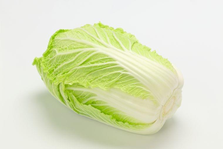 「白菜」の栄養素や歴史【管理栄養士監修】12月の旬の野菜の栄養学
