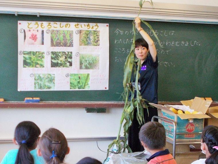 小学校で給食全般の業務に携わりながら活躍中の管理栄養士 池水梨香さん