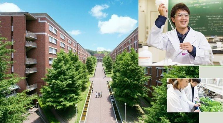 File 04. 静岡県立大学 食品栄養科学部 栄養生命科学科   管理栄養士・栄養士の学校
