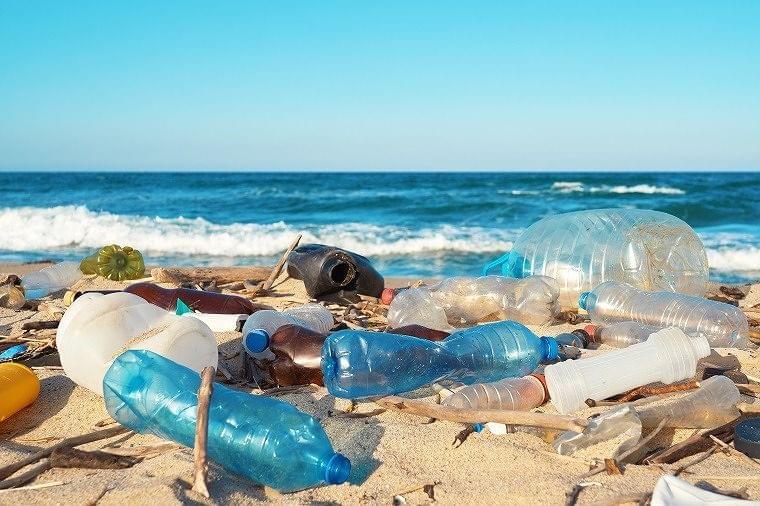 海洋プラスチック問題について知ろう。つくる責任 つかう責任 part2