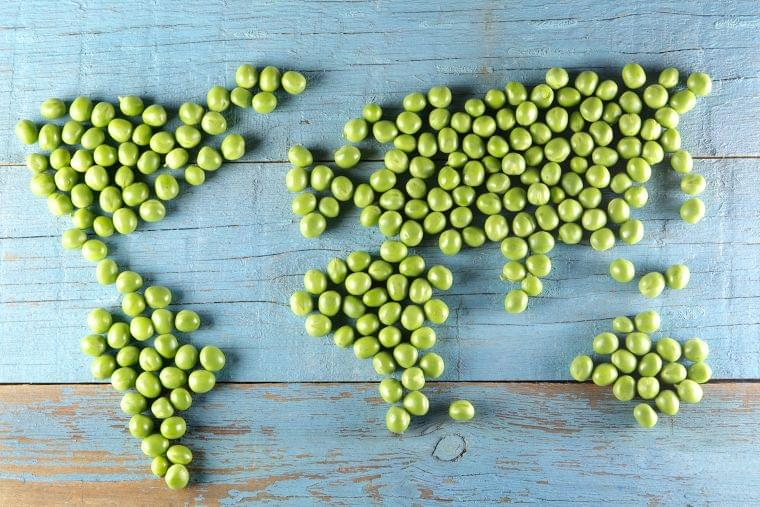海外の『食』情報の習得方法