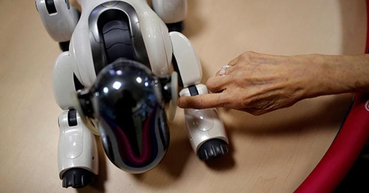 介護現場で活躍するロボット、高齢社会の切り札となるか | ロイター発 World&Business | ダイヤモンド・オンライン