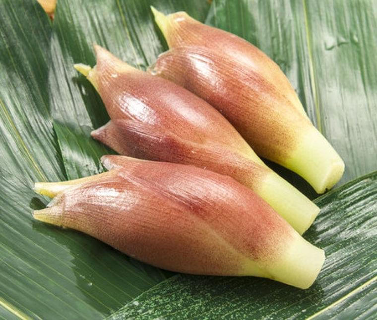 旬の野菜「みょうが」の栄養成分や期待できる美容・健康効果について | ニコニコニュース