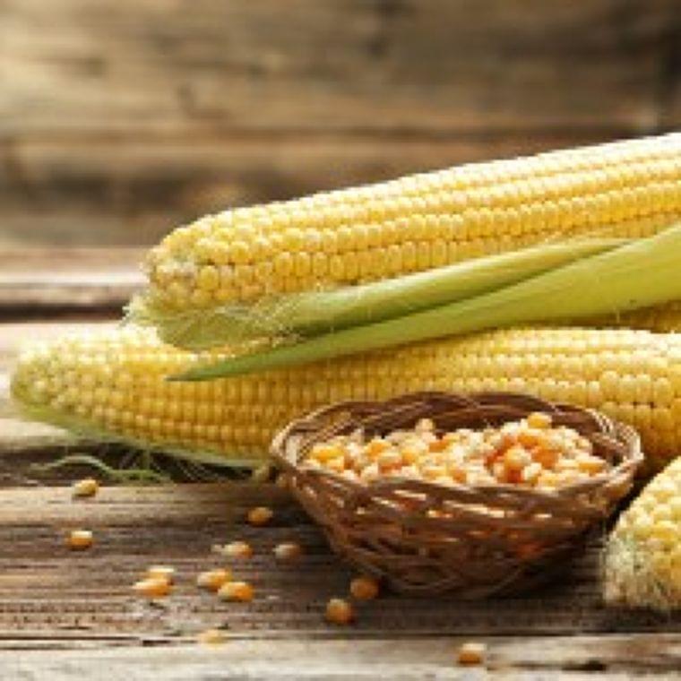 食物繊維のニュース - 腸内環境美化にも!旬の「トウモロコシ」の美味しい調理法 - 最新ボディケアニュース一覧 - 楽天WOMAN
