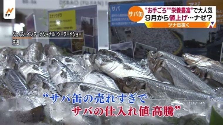 """9月からサバ缶値上げ・・・ナゼ? """"栄養豊富""""で大人気 TBS NEWS"""