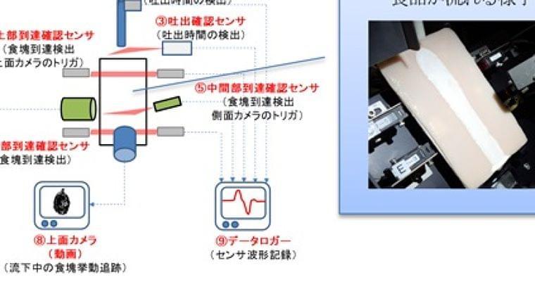 食品の飲み込みやすさを指標化、武蔵野赤十字病院と明治:介護:日経デジタルヘルス