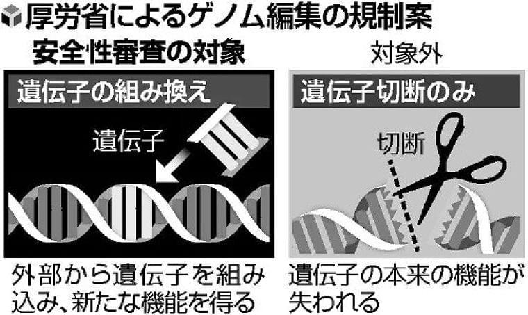 ゲノム編集食品「遺伝子切断」は審査せず…厚労省調査会が了承 : yomiDr. / ヨミドクター(読売新聞)